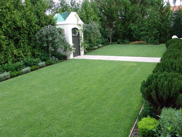 Zoysia-Turf-Grass-Lawn-5-768x576