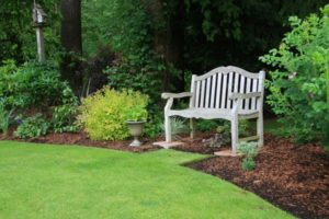beautiful Sir Walter Buffalo Grass lawn in front of garden and park bench
