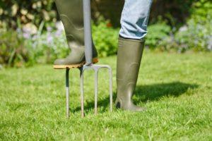 Garden Fork Aerating Lawn