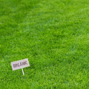 Sir Walter Turf with Organic Label