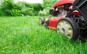 Lawn mower cutting grass with gardening background