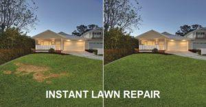 Instant Lawn Repair