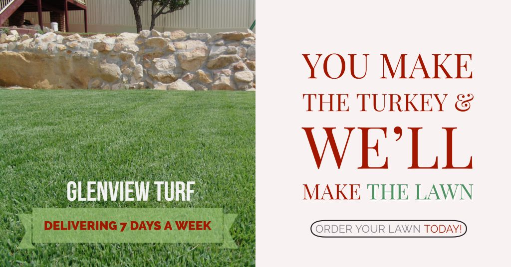 You make the turkey and we'll make the lawn Glenview Turf