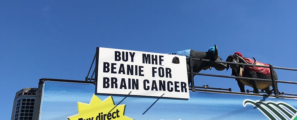 Beanie for Brain Cancer 2018 12 GT