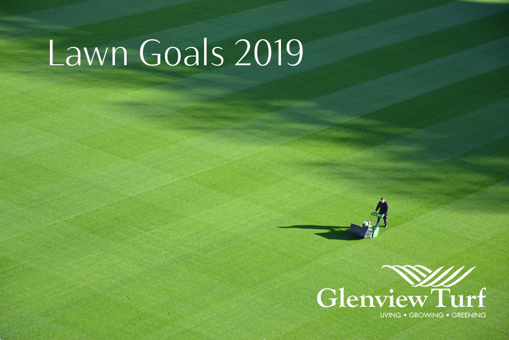 Lawn Goals 2019 Glenview Turf