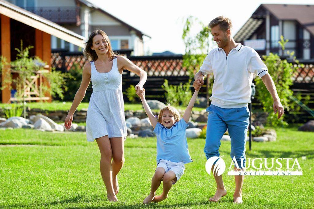Augusta Zoysia Lawn Family 1e1 - Glenview Turf
