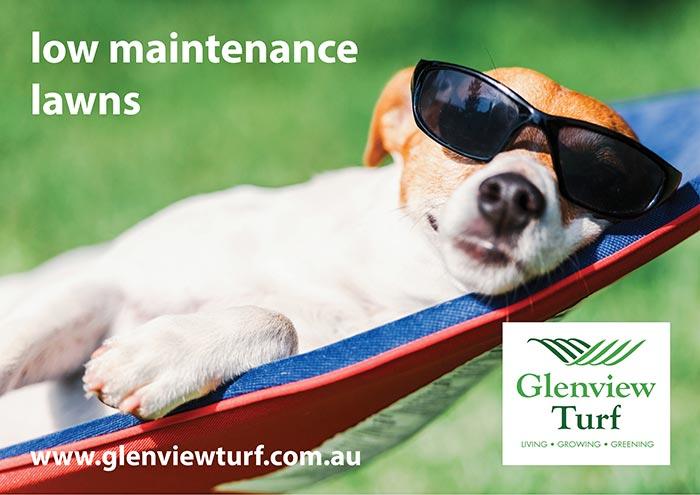 Glenview Turf Low Maintenance Lawns